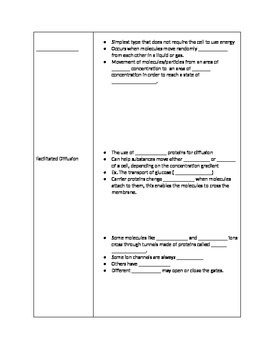 Cell Processes Notes Outline Fill-In