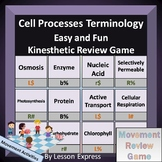 Cell Processes Terminology -- Kinesthetic Review Game