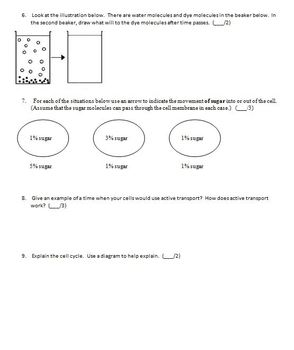 Cell Processes Test