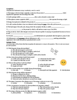 Cell Processes and Energy Summative Assessment (chapter test) with Answer Key