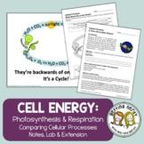 Photosynthesis & Respiration - PowerPoint & Handouts Dista