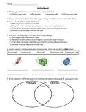 Cell Quiz w/ Key