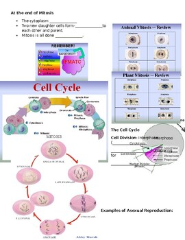 Cell Reproduction Cloze Notes