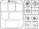 Mitosis - Science Interactive Notebook