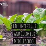 Cell Respiration Cut and Color for Middle School