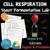 Cell Respiration With Yeast Low-Prep Anaerobic Fermentation Lab