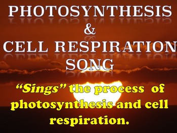 Cell Respiration  and Photosynthesis Bundle