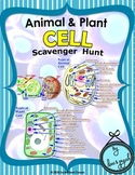 Cell Scavenger Hunt - {Animal /Plant Cell}