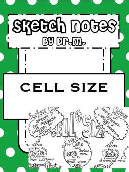 Cell Size Sketch Notes Doodle Notes W/Teacher's Guide & Student Notes!
