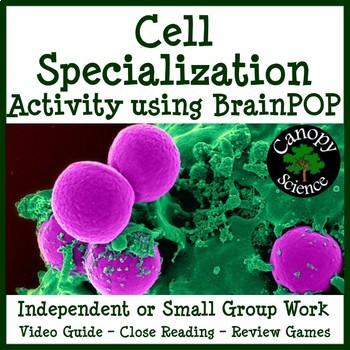 Cell Specialization Brain Pop