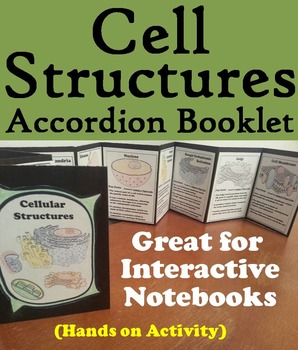 Cell Organelles Activity