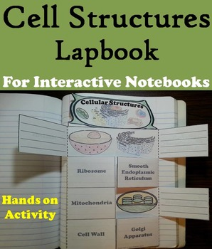 Cell Organelles Activity/ Cellular Structures Foldable