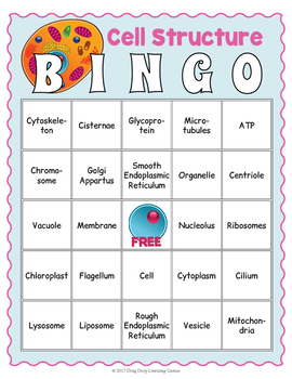 Cell Structure Bingo Game