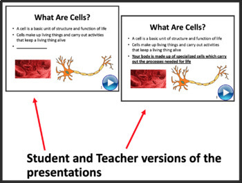 Cell Structure Lesson - Biology PowerPoint Lesson and Student Notes