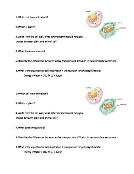 Cell Structure Exit Ticket