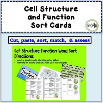 Cell Structure Function Word Sort Cards and Activity