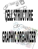 Cell Structure Graphic Organizer