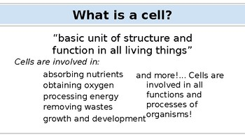 Cell Structure & Organelles Presentation