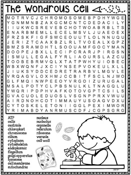Cell Structure Word Search Activity by Tied 2 Teaching   TpT