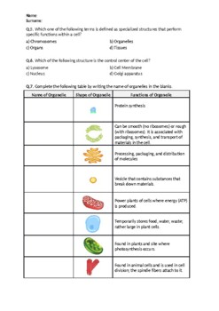 Cell Structure - Worksheet