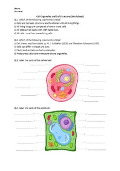 Cell Structure Worksheet By Science Worksheets Tpt