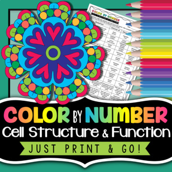 Cell Structure And Function Color By Number