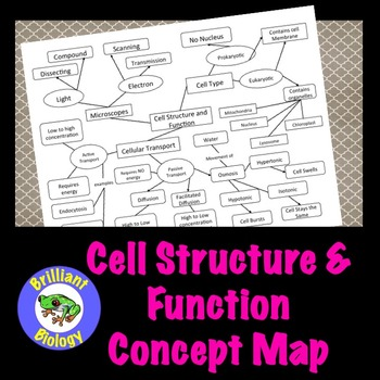 Cell Structure and Function Concept Map