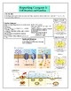 Cell Structure and Function EOC Review