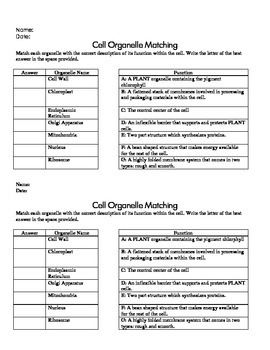 Cell Structure and Function Formative Assessment Pack