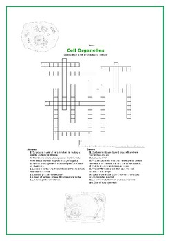 Cell Structure and Function Fun Activities
