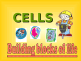 Cell Structure and Function Notes Powerpoint Presentation