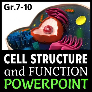 Cells PowerPoint {Editable}