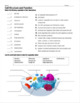 Cell Structure and Function Review Worksheet