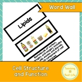 Cell Structure and Function Word Wall/Vocabulary Cards