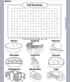 Cells and Organelles Review Worksheet: Word Search/ Coloring Sheet