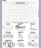Plant and Animal Cells and Organelles Review Worksheet: Word Search