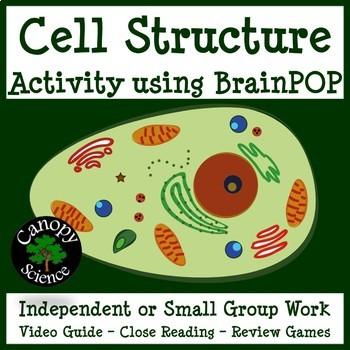Cell Structures BrainPOP