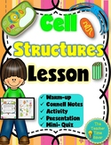 Cell Structures and Organelles Printable Lesson (notes, presentation, actvity)