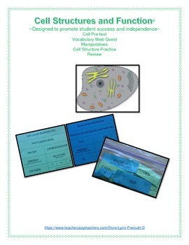 Cell Structures and Functions, Vocabulary Activities