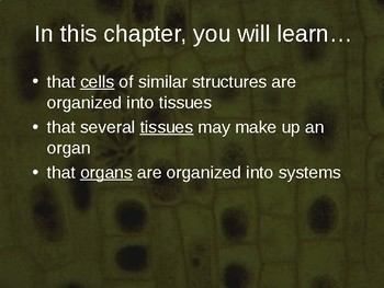 Cell Systems PowerPoint