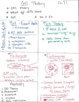 Cell Theory Anchor Chart