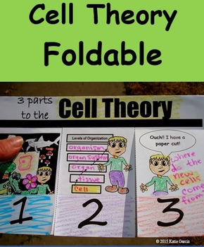 Cell Theory Foldable