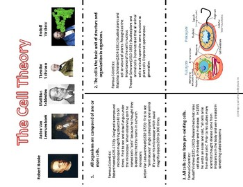 Cell Theory Foldable  with Power Point Notes
