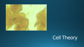 Cell Theory PowerPoint