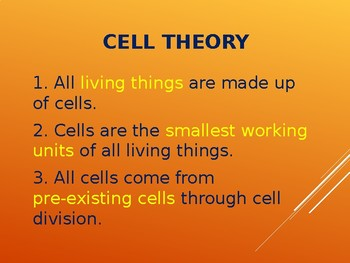 Cell Theory & Structure - Organelles