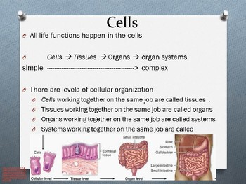 Cell Theory and Early Life PowerPoint