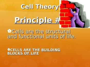 Cell Theory and Organization of LIfe