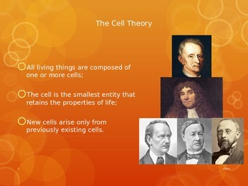 Cell Theory and Parts the Animal Cell