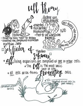 Cell Theory sketch notes