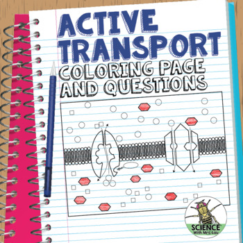 Cell Transport Active Transport Coloring Page and Application Questions
